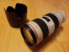 Canon EF 70-200mm f/2.8 L IS USM Lens w/ Extender EF 1.4x II