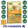Advocate Green 3 for Puppies & Small Dogs Up To 4 kg -  3 Pack - Flea, Heartworm