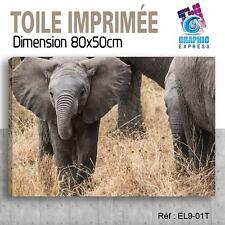 80x50cm - TOILE IMPRIMÉE- TABLEAU  POSTER DECO -ELEPHANT FELIN - EL9-01T