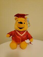 Disney Winnie the Pooh Graduation Plush