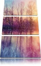 Árboles Espejo Situado en el Agua 3-Teiler Foto en Lienzo Decoración de Pared