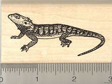 Bearded Dragon Rubber Stamp, Pogona Reptile, Lizard of Australia J4404 WM