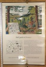 Shell, A Guide To Surrey Vintage 1960's Educational Poster. Excellent Condition
