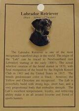Black Labrador Retriever Dog Hat Pin Lapel Pins -Lab