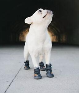 🔥 New Sealed Rare Beluga 544 Dog Shoes Yeezy Sply Fresh Pawz Sz M Grey/Orange
