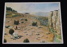 C275 Affiche Scolaire vintage TERRAIN GRANITIQUE PLATEAU CALCAIRE 15 16 mouton