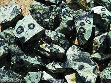 "1/2 lb 1-2"" KAMBABA JASPER Bulk Rough Rock Stones Crocodile from Madagascar"