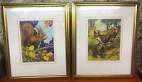 Original Gouache Framed Paintings Red Squirrel Fox Pair Nursery British Wildlife