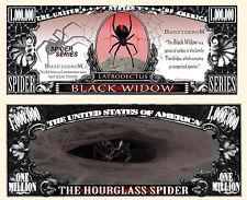 ARAIGNEE BILLET MILLION DOLLAR US! VEUVE NOIRE Black Widow Spider Animal Venimeu
