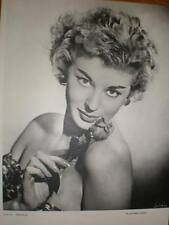 The Rose Walter Bird art photograph 1956