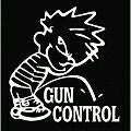 2ND AMENDMENT GUN* vinyl decal sticker Truck Diesel car hunting 4x4 funny