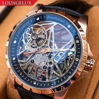 Mens Automatic Mechanical Watch - Rose Gold Black Dial Leather DIASTERIA 13868