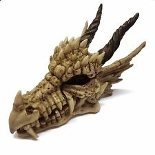 DRAGON SKULL SKELETON HALLOWEEN FANTASY MONEY BOX PIGGY BANK DRAGONS SKULL4