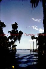 1959 Gorgeous Cypress Gardens Kodak Red Slide s369