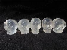 5pcs Natural Crystal Quartz Skull White Stone Healing Hand Carved Figurine Alien