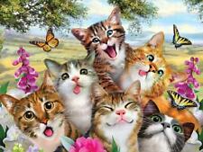 Cats selfie enamel style metal sign 30cm x 40cm