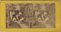 Scena Da Genere Set Antico Francia Foto Stereo di Carta Albumina Ca 1860-65