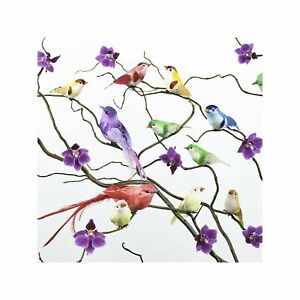 Colourful Oriental Birds Perched on Orchids Art Wall Decor Print 1 60x60cm