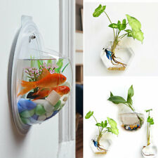 Creative Hanging Glass Planter Vase Terrarium Home Garden Wall Decor Hanging Cle