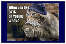 2x3 FRIDGE MAGNET FUNNY SILLY CAT LOVER HUMOR You Like Cats Or You're Wrong