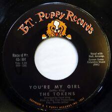 The TOKENS 45 You're My Girl/Havin' Fun BT PUPPY sunshine pop NM d1437