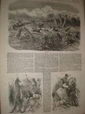 Kangaroo Hunting in Australia 1850 prints ref AX