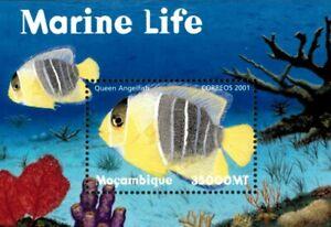 Mozambique 2001 - Marine Life Queen Angelfish - Souvenir Sheet - Sc 1413 - MNH
