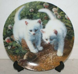 """Amy Brackenbury's Cat Tales Collection - """"A Chance Meeting"""" Collectors Plate"""