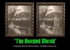 Haunted Marsh 8x10 Haunted Memories Changing Portrait Halloween Lenticular