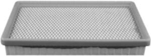 Air Filter Casite CFA1250