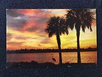 Beautiful Florida Sunset Postcard posted 1969 L-48