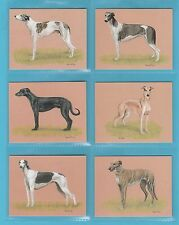 DOGS - IMPERIAL PUBLISHING LTD. - SET OF L6 DOGS CARDS -  GREYHOUNDS
