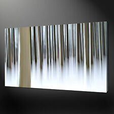 "ABSTRACT BIRCH FOREST MODERN DESIGN PHOTO BOX CANVAS PRINT 20""x16"" FREE UK P&P"