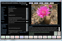 Cactus + Succulent Database Software CDROM for Windows 7/8/10 XP Vista
