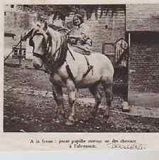 1937  --  DOULLENS   JEUNE PUPILLE MENANT UN DES CHEVAUX A L ABREUVOIR   3A449