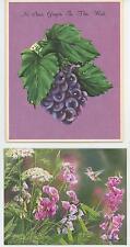 VINTAGE CONCORD GRAPES JAM PIE RECIPE BIRTHDAY ART PRINT 1 LANG SWEET PEAS CARD