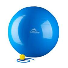 Black Mountain 2000lbs Static Strength Exercise Stability Ball With Pump 55 Cm