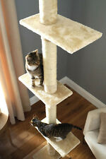 Floor To Ceiling Cat Tree a fab present for the cat you love so much