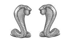 """Ford Mustang Cobra Snake WHITE & Chrome Fender 2 3/4"""" Emblem Emblems pair"""