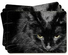 Gorgeous Black Cat Picture Placemats in Gift Box, AC-300P