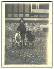 France, Wimereux, un enfant avec ses chiens  Vintage silver print.  Tirage a