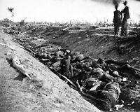 Battle of Antietam - Sunken (Bloody) Lane Dead Confederates 8x10 Civil War Photo