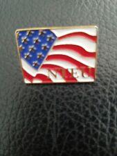 NTEU Flag Lapel Pin