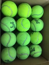 24 tennis balls-used For Beyond Tennis Court Use $9.99 + S&H