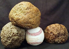 Keokuk Geodes 3 LARGE Baseball Size Break Your Own Raw Geode Quartz Crystal Iowa