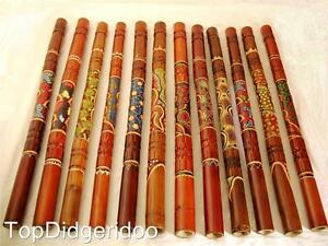 Dot Painted & Carved Aboriginal Didgeridoo Great Sound
