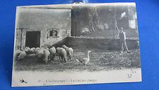 cpa a la campagne oie moutons la clef des champs