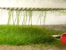 Static Grass Applicator - Standard 44mm