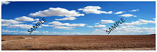 "HO Scenery Background Field w/clouds 12"" high x 36"" wide"