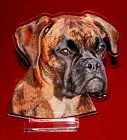 statuette photosculptée 10x15 cm chien boxer 7 dog hund perro cane